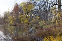 CP_Pond_12-3_diptych_WP_website_